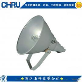 创瑞 CRNTC9200 防震型超强投光灯 大功率投光灯 1000w