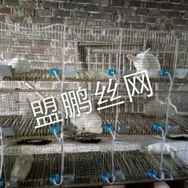 肉兔笼价格/濑兔笼/兔笼厂家/商品笼/子母兔笼