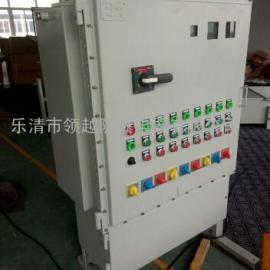 消防应急灯具专用应急电源防爆箱