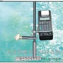 LJD-10型打印式流速流量仪