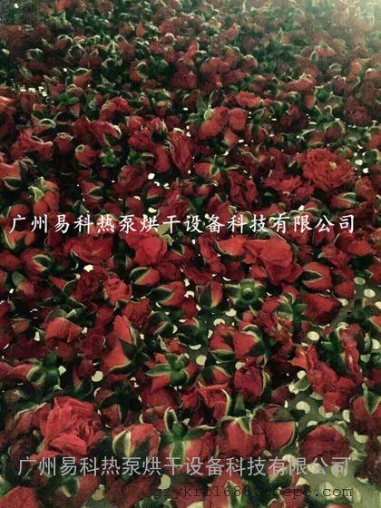 广州易科玫瑰花烘干机_云南玫瑰花烘干机