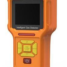 GT903-H2S型便携式泵吸式硫化氢检测报警仪