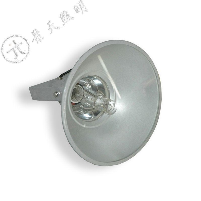 GT101-L400防水防尘防震投光灯