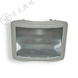 GT301-G-L150 防水防尘防震防眩灯