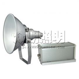 LB8016-1000W防震型投光灯 LB8016大功率投射灯 金卤灯钠灯可选