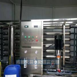四川大型纯净水设备天羿3吨/小时纯净水制水设备