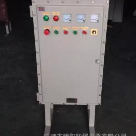 防爆液位控制柜(ⅡB ⅡC)