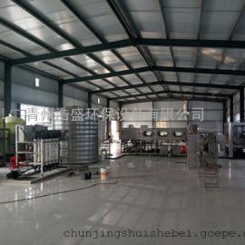 桶装水设备纯净水生产反渗透设备二级RO设备