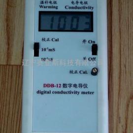 数字电导率仪DDB-12型