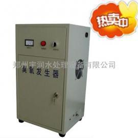 誉润 臭氧机 消毒杀菌设备 商用家用水净化6g臭氧发生器臭氧机
