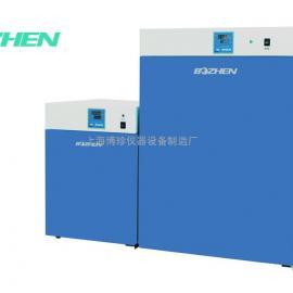 上海博珍DGG-9140A立式电热恒温鼓风干燥箱