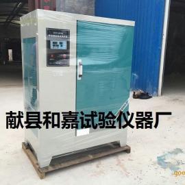 40B混凝土试块养护箱,混凝土恒温恒湿养护箱
