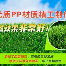 新疆幼儿园休闲草、 新疆足球场塑料草坪