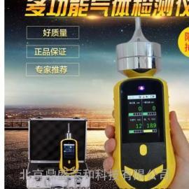 DS/ZYD-8313臭氧检测仪