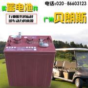 火炬蓄电池3-DG-210(3-EV-180)