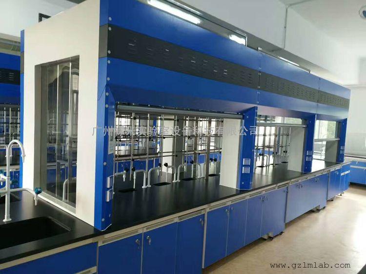 实验室家具 实验台柜 通风柜生产厂家 禄米实验室家具