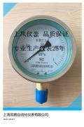 上海风雷耐震压力表 YTN 径向 轴向 带边压力表 不锈钢