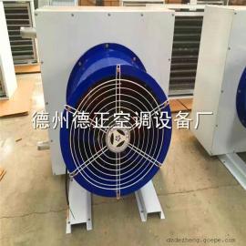 低温热水采暖方案 节能防腐防水防冻防爆型热水暖风机厂家 选型