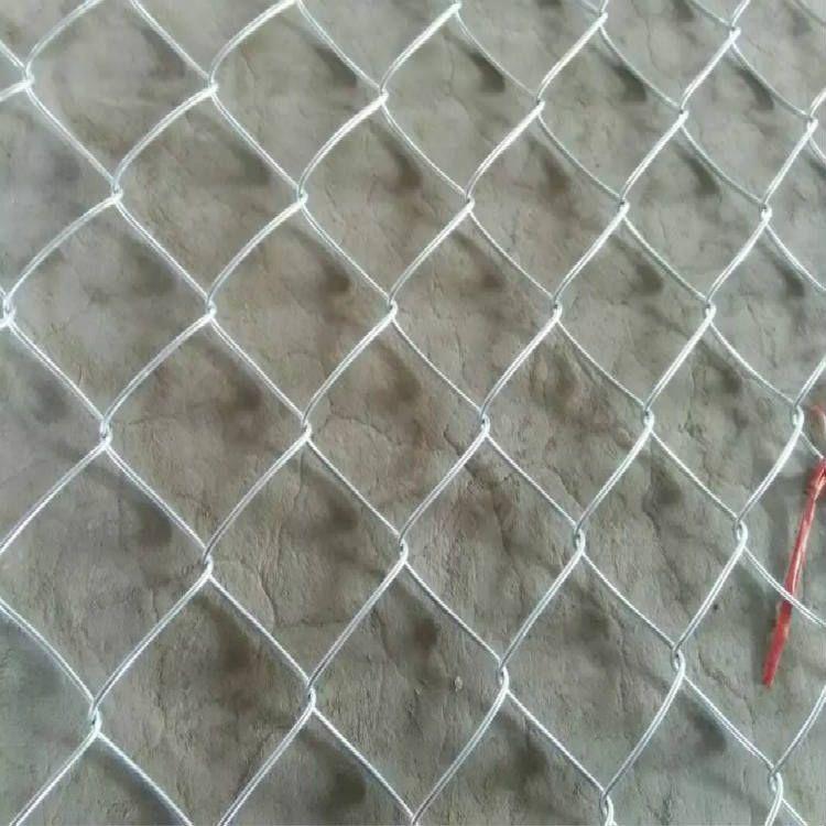 边坡铁丝网:客土喷播植草绿化用网-大规模施工环山路菱形铁丝网