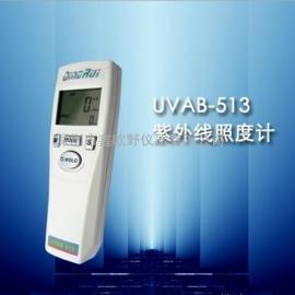 UVAB-513紫外线照度计 紫外线强度计 科电厂家