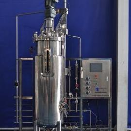 300升自动发酵罐