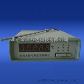 自校式铂电阻数字测温仪 型号:RCY-2A