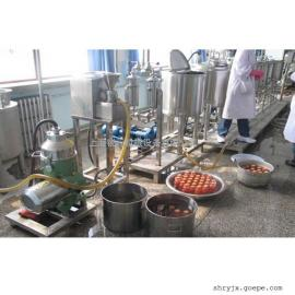 小批量生产型果汁饮料生产线设备