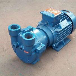 2BV-E110水�h真空泵