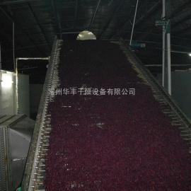 红薯片专用烘干设备供应