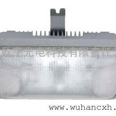 GF9040-WJ40W 长寿顶灯GF9040 紫光