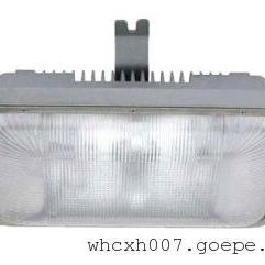 远光GA131 GA131-40W低频无极灯GA131