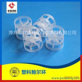 塑料鲍尔环 聚丙烯鲍尔环 PP鲍尔环填料