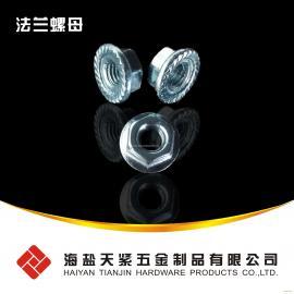 带齿法兰螺母 DIN6923 M10