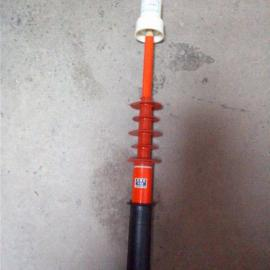 潜江防雨型验电器;可靠选择六腾验电器