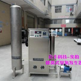 矿泉水 桶装水消毒臭氧发生器80g 全国十大厂家