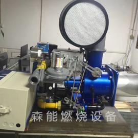 拉幅定型机燃烧机|Shoei正英BJ系列燃烧机