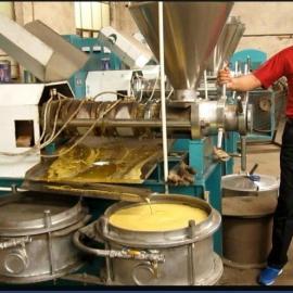 供应内蒙古包头商用125型光华牌全自动油葵榨油机设备