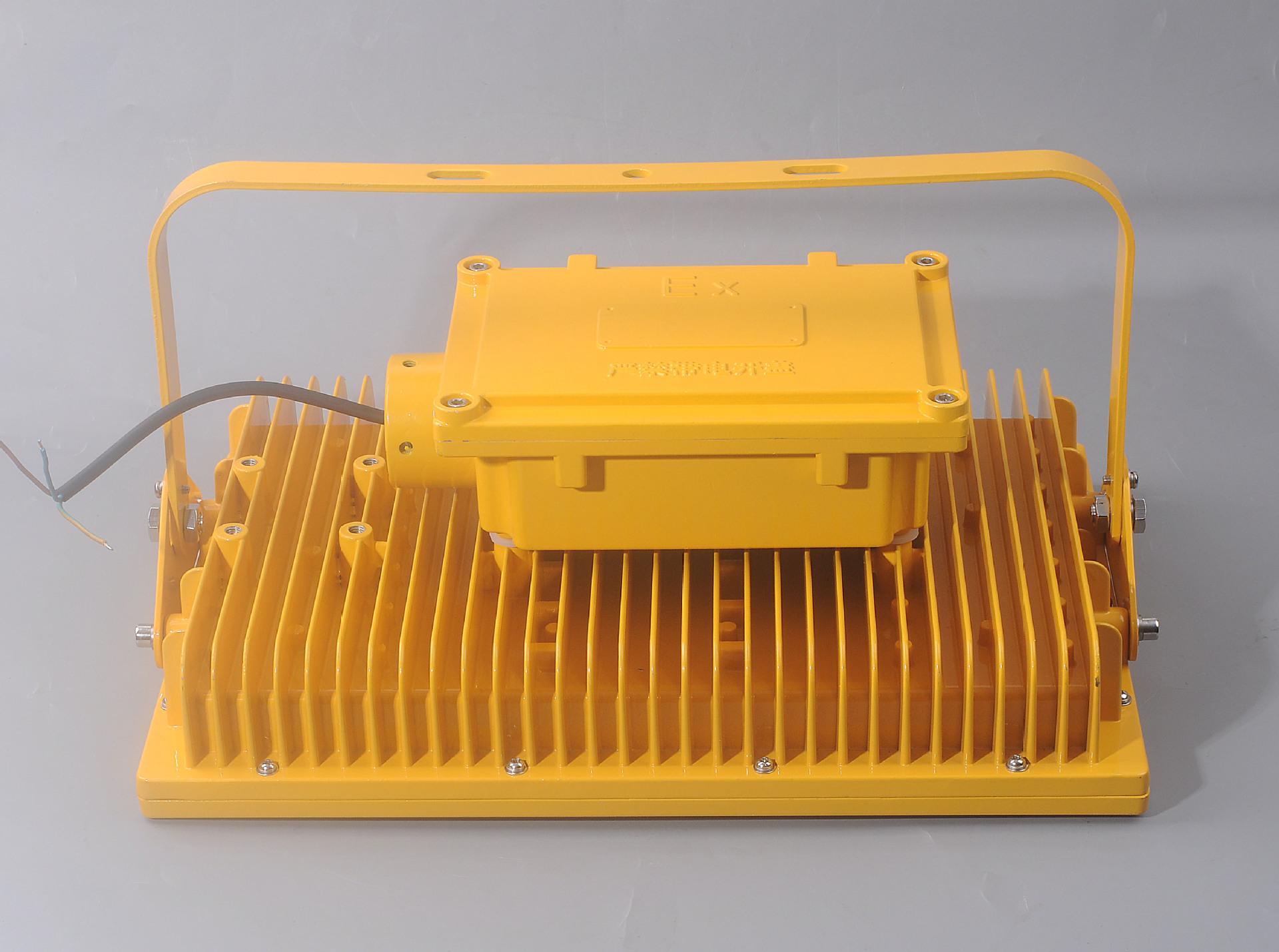 CCD97免维护防爆节能照明灯