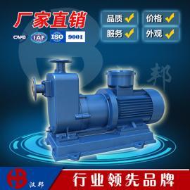 ZCQ型自吸磁力泵,不锈钢磁力泵,自吸泵