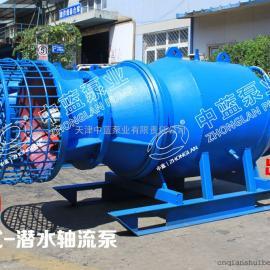 维修保养雪橇式潜水轴流泵