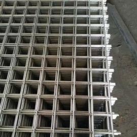 广元喷漆钢丝网片-苗床支架热镀锌钢丝网|河北网片加工厂