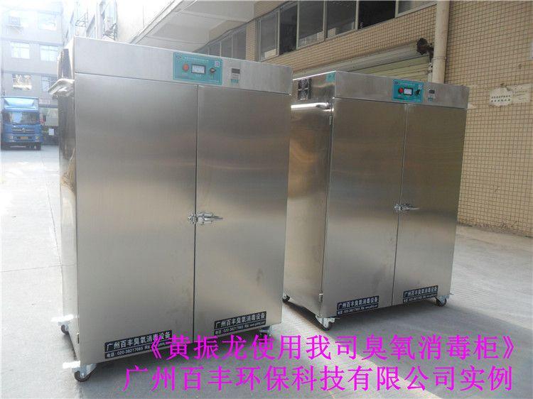 工业臭氧消毒柜 消毒柜的十大品牌 臭氧杀菌柜厂家