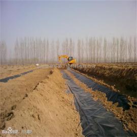 垃圾覆盖膜|填埋场覆盖土工膜|生活垃圾覆盖防渗膜