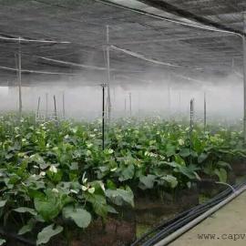 北京冷床大喷加湿设备凯普威直销