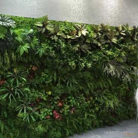 东莞仿植物厂家供应仿真植物墙 仿真植物批发 室内装饰挂件