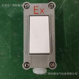 防爆照明开关暗装式 220V10A暗装式翘装防爆开关