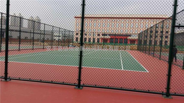 体育场围栏/体育场围栏价格/临沂体育场围栏生产厂家