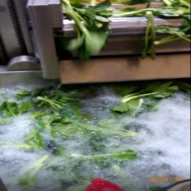 佳美供应西红柿辣椒清洗机 大型蔬菜清洗机 果蔬清洗加工设备