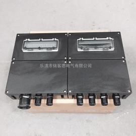 带浪涌保护器防水防尘防腐配电箱FXM-T