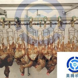 昊腾机械宰鸡设备鸡宰杀的正确方法